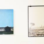 Salley_Thorne_Palms (Vistas Installation view) 2013