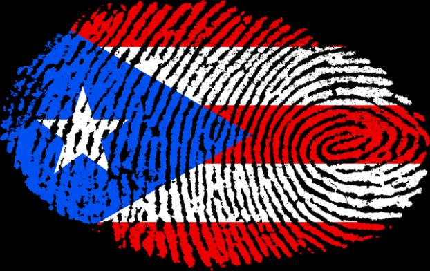 PR-fingerprint